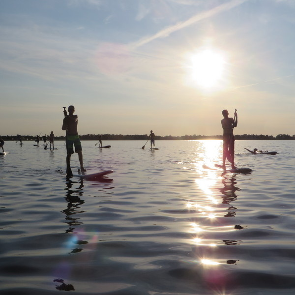 Stand up paddle board Vermietung Nietap / Roden